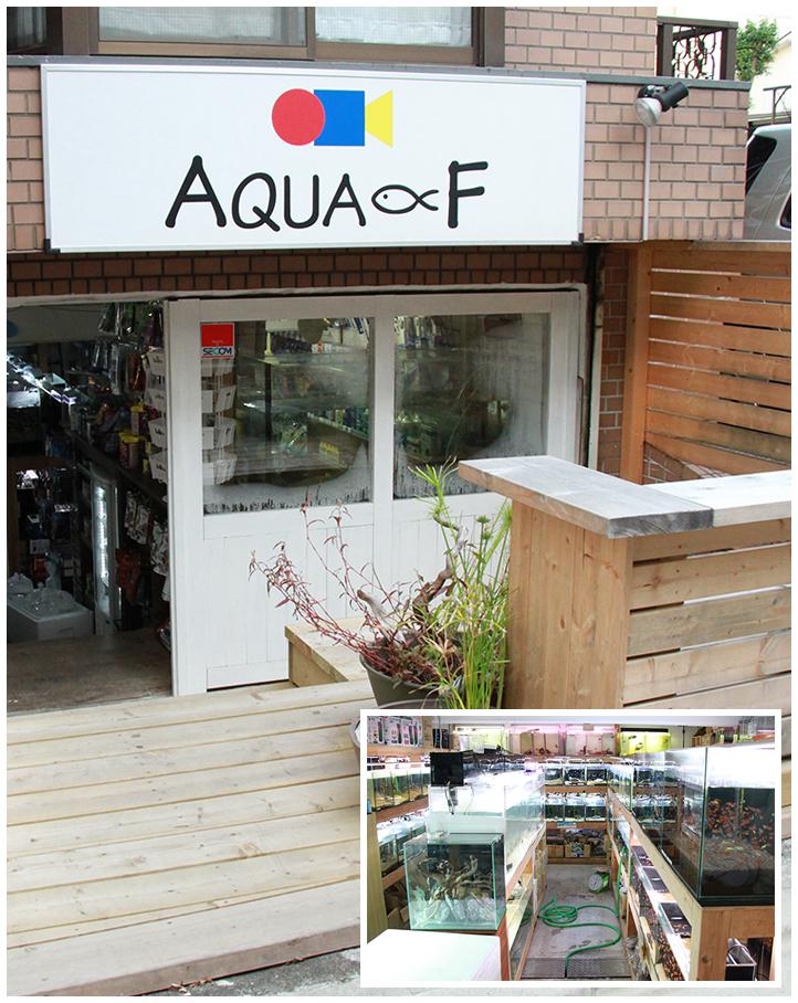 AQUA-F 東京店